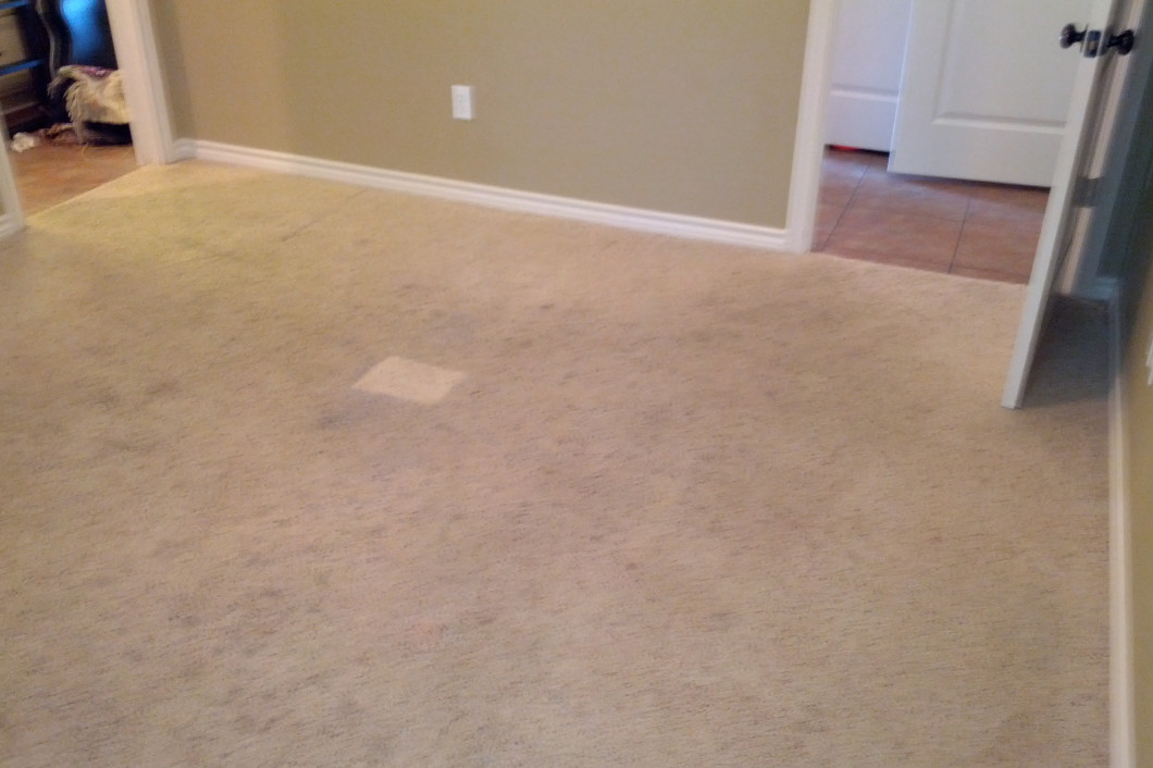 Carpet Cleaning Services & Upholstery Cleaning
