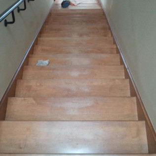 carpet cleaning tyler tx